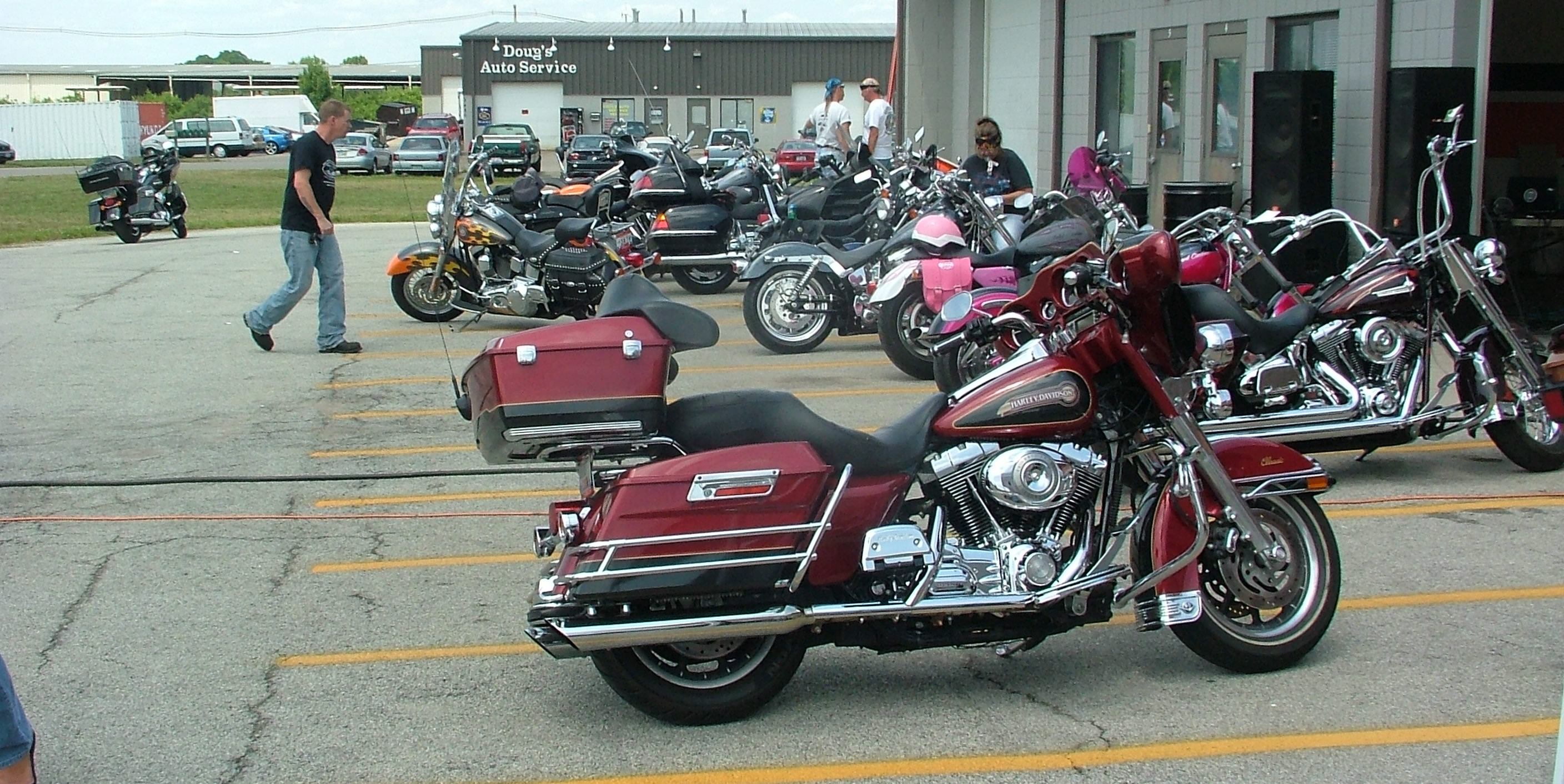 Hide Harley Davidson Lineup of Bikes